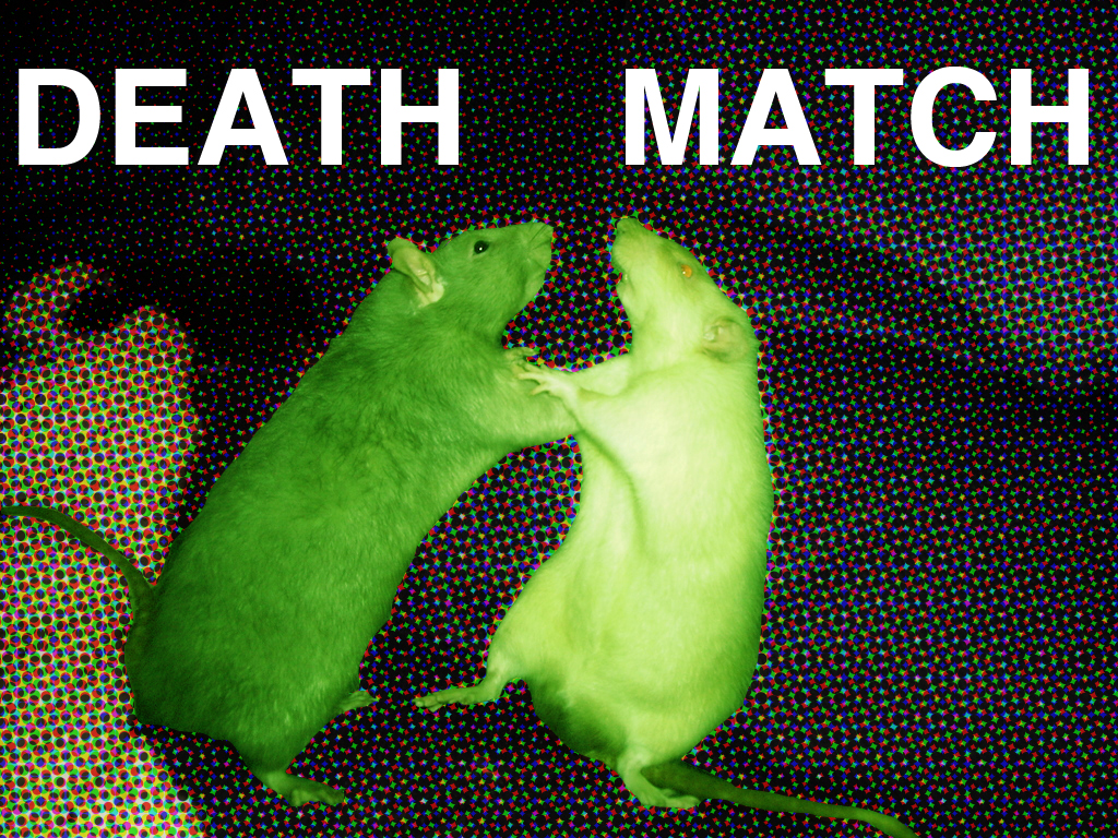 Flux Death Match: Arts Funding, Follow the $$$$