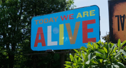Today We Are Alive