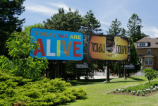 Steve Lambert Today We Are Alive  photo